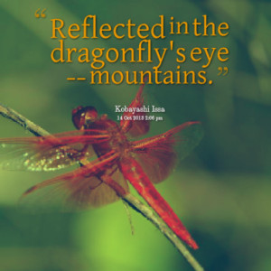Reflected in the dragonfly's eye -- mountains.