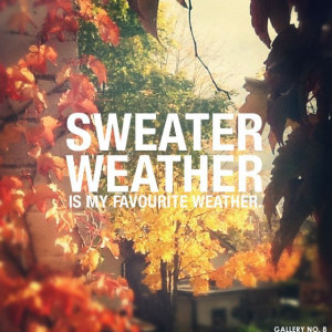 Sweater weather is my favourite weather