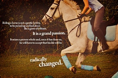 Tag Archives: horse jumping quotes and sayings