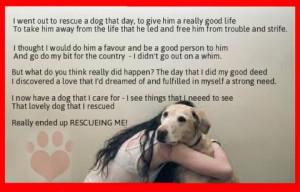 Animal Rescue Sayings...
