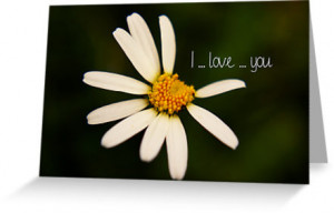 2797001-2-i-love-you---daisy.jpg