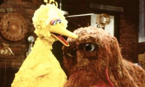 Big-Bird-and-friend-on-Se-011.jpg