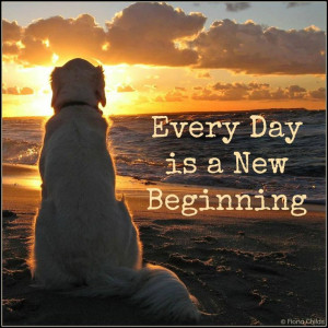 New Beginning...