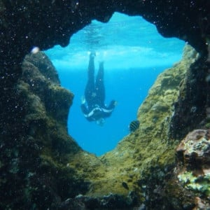 be a marine biologist and dive in caves