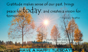 Tuesday-Good-Morning-Quotes-Gratitude-quotes.jpg