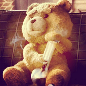fearstrange:#ted #weed (Tomada con Instagram)