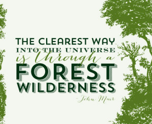 forest-wildnerness-quote