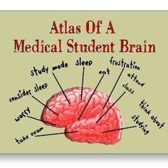 Inspirational Quotes For Medical School Students ~ Medicine on ...