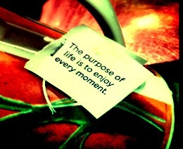 Yogi tea-inspirational quote!!