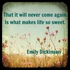nostalgia quotes stuff emily fields quotes quote life inspirational ...