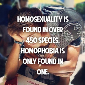 Homosexuality and Homophobia Gay Pride Quote Picture