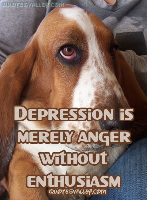Quotes About Depression And Anger Depression is merely anger