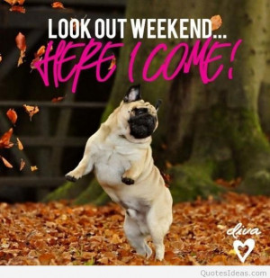and friday is coming, they are near! I love weekends quotes, sayings ...
