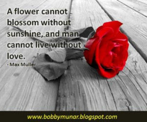 Cannot Lie Unaffected Love Quotes