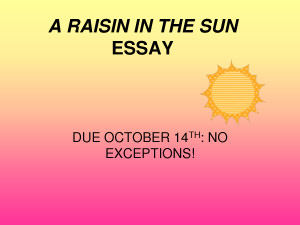 A raisin in the sun dreams deferred essay