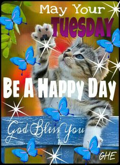 ... daily greeting daily blessed tuesday mornings quotes blessed tuesday