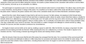 summary of hatchet essay