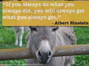 Donkey Quotes Quote donkey