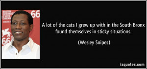 More Wesley Snipes Quotes