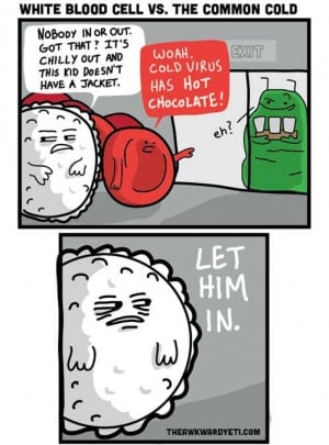 White Blood Cells Vs. The Common Cold In Comic By The Awkward Yeti