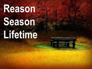 Reason, season, and lifetime!!!