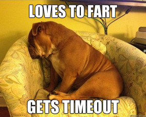 bulldog loves to fart funny meme