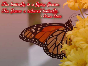 The butterfly is a flying flower, The flower a tethered butterfly ...