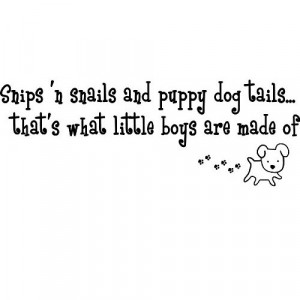 Snips 'n snails and puppy dog tails...that's what little boys are made ...