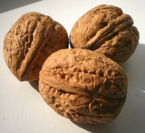 Pecans Vs Walnuts