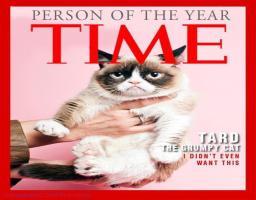 Tard The Grumpy Cat Quotes Tard the grumpy cat ... quote: