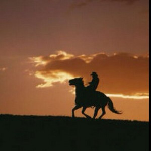 equestrian quotes equestrianowned tweets 10 following 197 followers ...