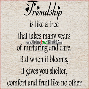 Friendship is like a tree that takes many years of nurturing and care ...
