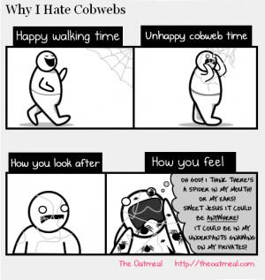 Why I Hate Cobwebs - Why I hate cobwebs