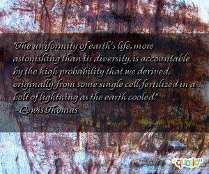 boyfriends cultural diversity quotes diversity quotes honor cultural ...