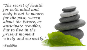 The secret of health for both mind and body is not to mourn for the ...
