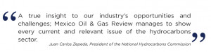 ... oil gas review 2015 2015 will be a defining year for the mexican oil