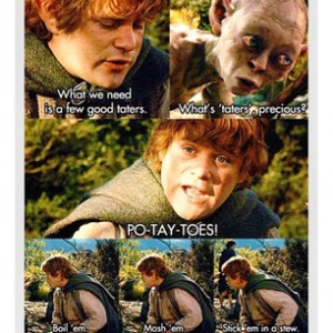 ... one of the most memorable quotes in the history of LOTR quotes