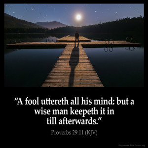 Proverbs 29:11 Inspirational Image