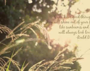 Quote Photo Wheat Gra ss Sunset Roald Dahl Desktop Wallpaper ...
