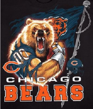 am a HUGE Chicago Bears fan, so....