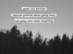 ... because goodbye means going away and going away means forgetting