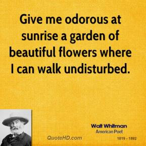 walt-whitman-nature-quotes-give-me-odorous-at-sunrise-a-garden-of.jpg