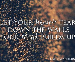 quotes about breaking down walls