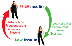 The sugar is then absorbed into the blood, raising the blood glucose ...
