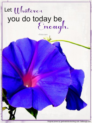 Morning Glories Flowers With Quotes