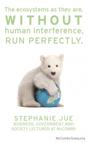 Putting a Price on Polar Bears, Stephanie Jue, Ethics, McCombs