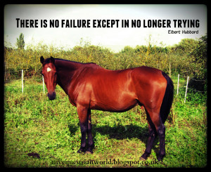 Inspirational Horse Quotes Image Search Results Picture