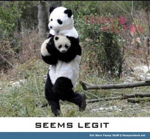 Panda Animal Kidnap...