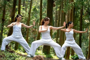 For girls, practising Martial Arts can be used for fitness and self ...