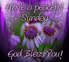 peaceful Sunday quotes quote days of the week sunday sunday quotes ...